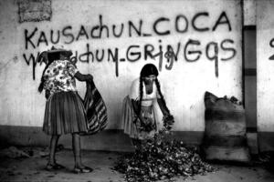 01-bolivia-cocaleros1.thumbnail